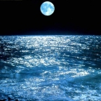 Mari e oceani si illuminano nel cuore della notte, cosa sta succedendo?