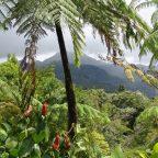 """Alla scoperta dell'ultimo paradiso terrestre """"vergine"""" della Terra: la Papua Nuova Guinea"""
